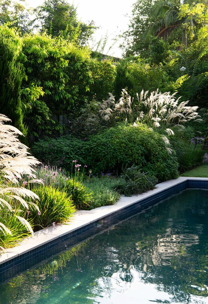 Layered foliage surrounds the pool, installed by GoodManors.