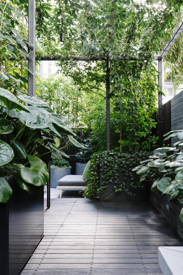 "Clever use of space and a green-on-green palette has transformed this [inner-city terrace](https://www.homestolove.com.au/garden-inner-city-terrace-12786|target=""_blank"") into a private oasis thanks to designer Lisa Ellis. The journey from the dining area to the sitting zone, is enveloped by lovely layers of green."