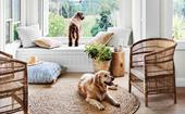 7 vacuum cleaners that actually pick up dog and cat fur