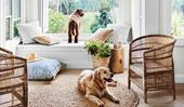 6 best vacuum cleaners for dog and cat hair