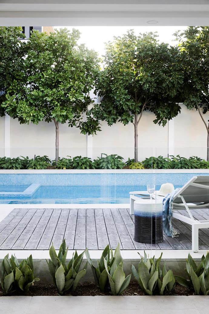 "The brief was for 'a modern pool and alfresco entertaining space that would connect the house, outdoor areas and bay' in this [modern Hamptons home in Sydney's south](https://www.homestolove.com.au/modern-hamptons-home-sydney-19531|target=""_blank"")."
