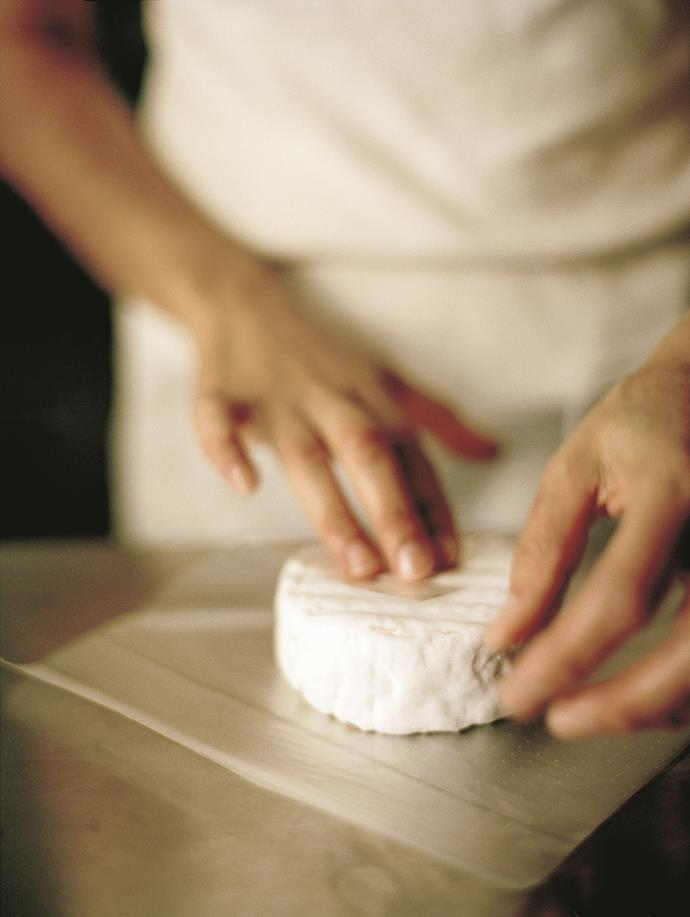 Artisan cheesemaking at the Barossa Valley Cheese Company.