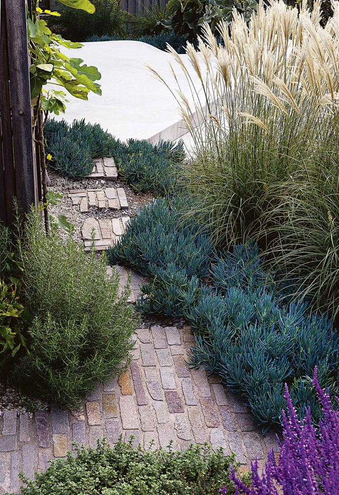 "A pathway of steppers is a relaxed treatment where a solid path isn't necessary. The steppers in this [Copacabana garden](https://www.homestolove.com.au/seaside-garden-copacabana-17734|target=""_blank"") are mini pieces of the main paved area, formed in situ repeating the 'Filetti' stone paving."