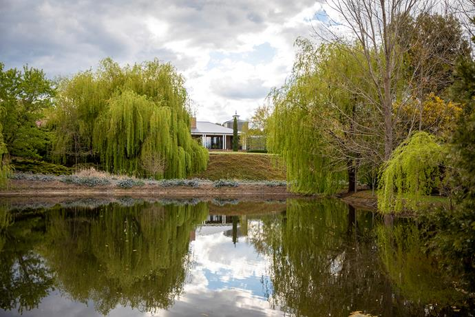 A view of the main house at Verdicus, an expansive garden at Tylden in Central Victoria, which is framed by golden weeping willows. The entrance driveway winds between two dams.
