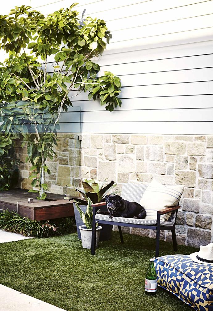 """The house's lime-rendered walls were stripped to expose the original sandstone, which influenced the choice of the 'Jericho' limestone pavers from [Eco Outdoor](https://www.ecooutdoor.com.au/