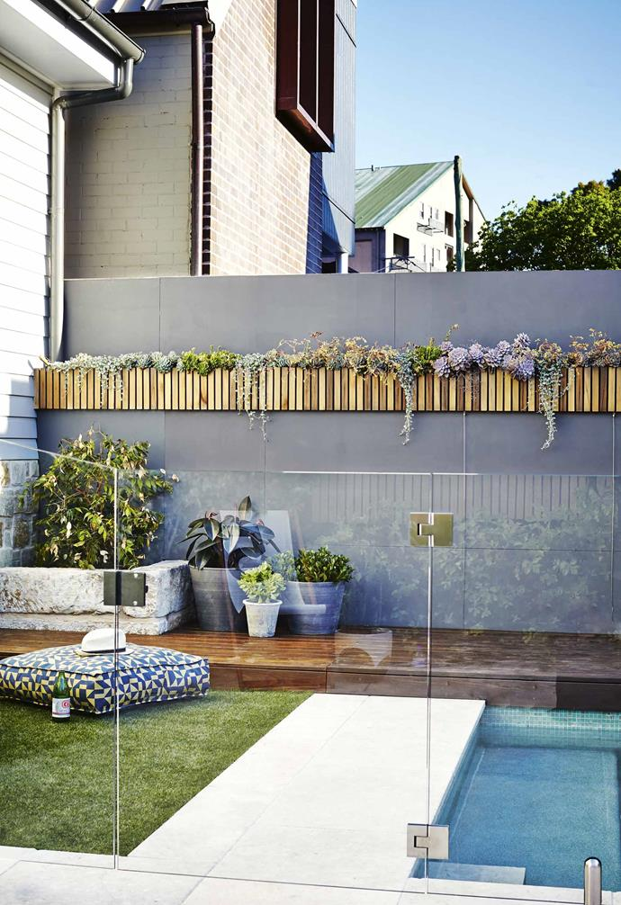 """Along with [drought-tolerant plants](https://www.homestolove.com.au/hardy-plants-20552