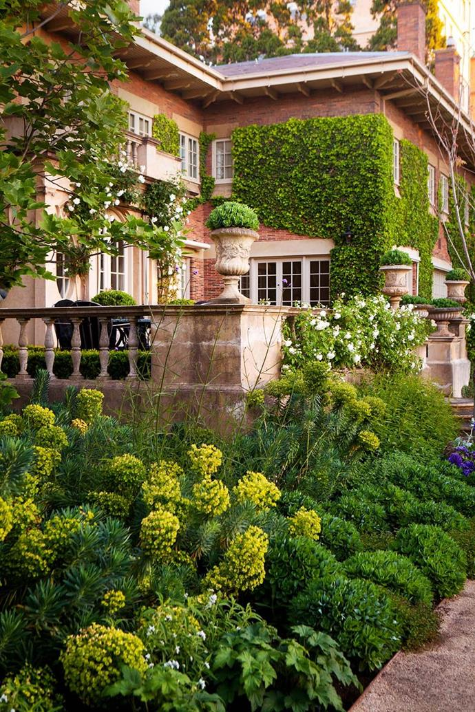 """The strong lines of this grand 1920s mansion in Melbourne are softened by rich layers of perennials, shrubs, and climbers in this garden designed by Paul Bangay. This [exquisite garden](https://www.homestolove.com.au/verdant-formal-garden-by-paul-bangay-20619