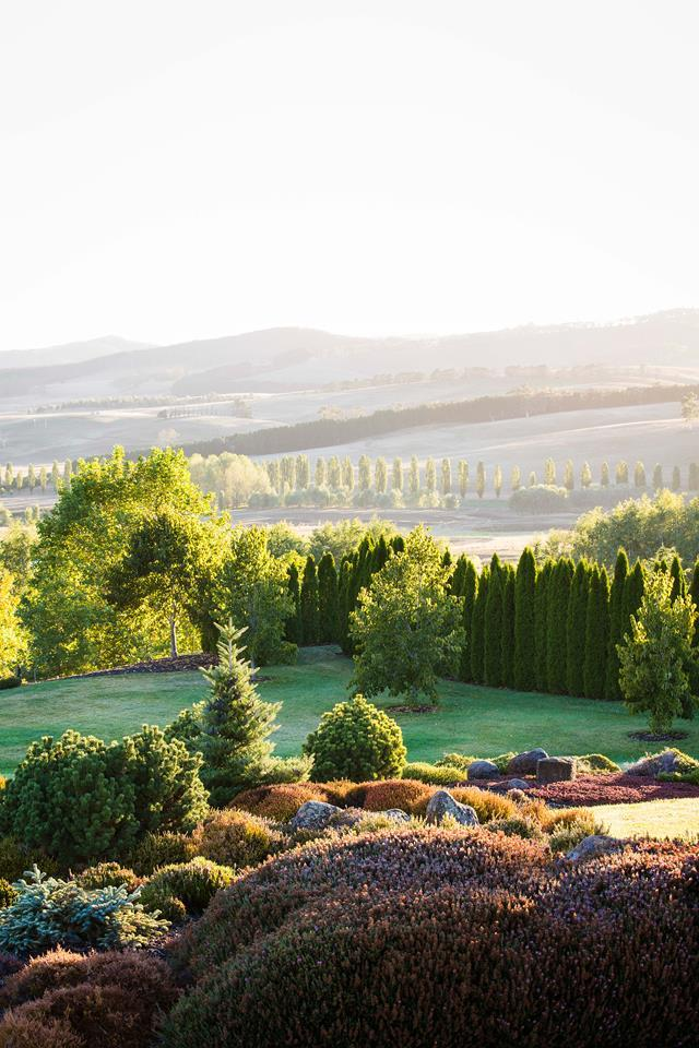 """From its unlikely location in prime grazing land to its immense and immersive proportions, everything about [Mayfield Garden](https://www.homestolove.com.au/mayfield-garden-in-oberon-19230