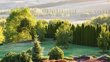16 of Australia's most beautiful gardens
