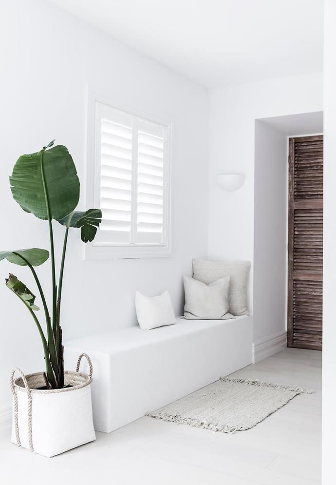 """The Luxaflex shutters, palm and timber doors in this entryway add to the holiday vibe of the [modern-Mediterranean-style home](https://www.homestolove.com.au/lana-taylors-modern-mediterranean-style-home-6378