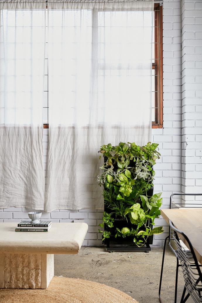 """Vertical garden, $285, [Urban Eden](https://urbanedenco.com/collections/all/products/vertical-garden target=""""_blank"""" rel=""""nofollow""""). (Can either be fixed to the wall or stand alone on a mobile rack.)"""