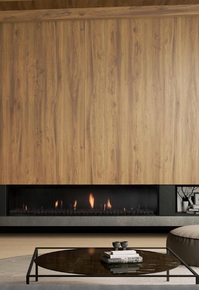 "DS1900 gas fire, $14,999 (not including flue and installation), [Escea](https://www.escea.com/au/|target=""_blank""|rel=""nofollow"")."