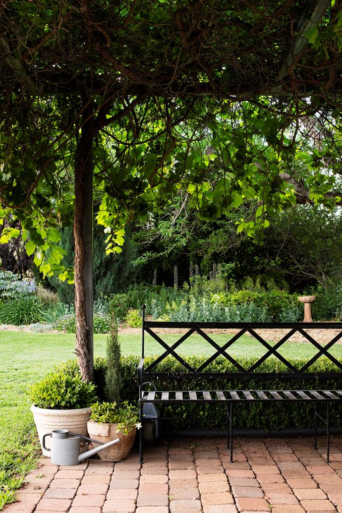 An iron seat under the grapevine-covered pergola is a cool spot to take a rest from gardening.