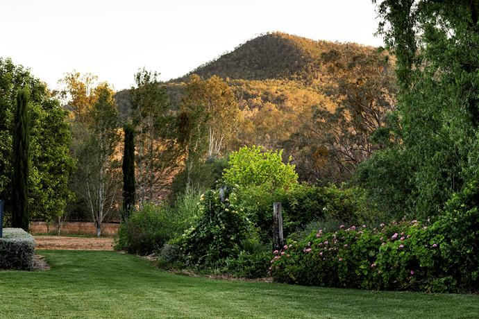 Water has always been a precious resource on this property and the verdant garden is in contrast to the surrounding paddocks.
