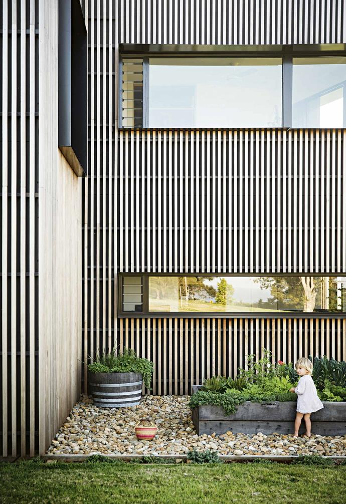 """**Lessons learnt**: """"While [cedar cladding](https://www.homestolove.com.au/exterior-cladding-options-20504 target=""""_blank"""") isn't cheap, it turned out to be a cost-effective solution,"""" says David. """"It let us transform the existing house rather than knocking it down and building from the ground up.""""<br><br>**Vegie garden** The family grows mustard greens and wasabi, plus leaves for salads and smoothies. Frida and Matilda help with the harvest."""