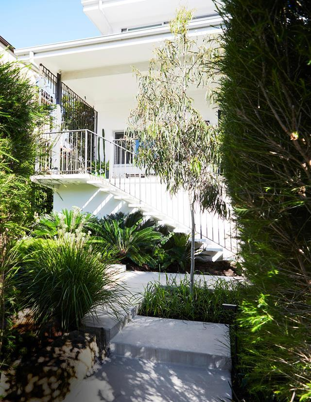 "Recognising the potential in an undeveloped garden scored Sydney landscape designer Nicola Cameron her dream family home. A concrete path and steps weave through beds of natives in the [front garden](https://www.homestolove.com.au/functional-family-garden-20695|target=""_blank"")."