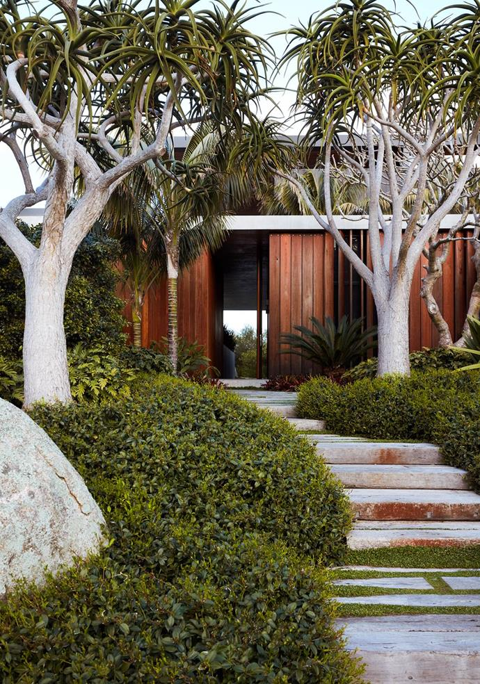 "An exquisite variety of robust, rugged plantings come together in this [Mollymook garden](https://www.homestolove.com.au/robust-coastal-garden-by-william-dangar-20564|target=""_blank""). Recycled hardwood sleepers lead to the front door and tree aloes underplanted with star jasmine add drama."