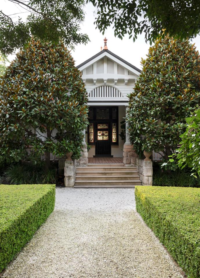 A formal hedge of Japanese box (Buxus microphylla var. japonica) and a pair of magnolias (Magnolia grandiflora 'Exmouth') help usher visitors to the entrance of this heritage Sydney home