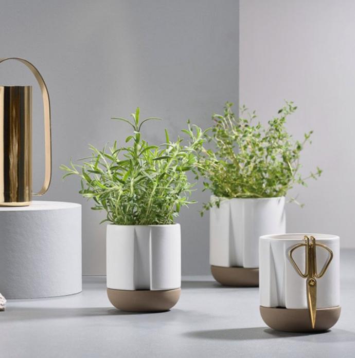 "Zone Self-watering Herb Pot in White, from $49, [Design Stuff](https://www.designstuff.com.au/zone-denmark-zone-herb-pot-white-self-watering-2-sizes/|target=""_blank""|rel=""nofollow"")"