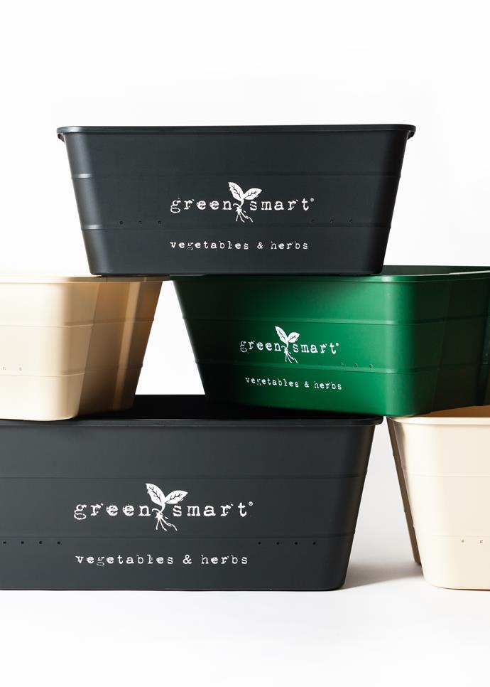 "Greensmart Self-Watering Pot, 69.95, [GrowSPACE](https://www.growspace.com.au/store/greensmart-pot|target=""_blank""|rel=""nofollow"")"