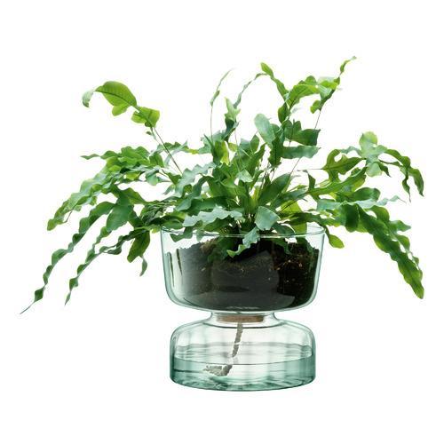 "Canopy Self-Watering Planter, $149, [Temple & Webster](https://www.templeandwebster.com.au/Canopy-Self-Watering-Planter-BLAI1040.html?refid=GPAAU447-BLAI1040_200381240&device=c&ptid=742896899015&PiID%5B%5D=200381240&gclid=CjwKCAjwrcH3BRApEiwAxjdPTe9YBp5GRDRd9dR_gCEtJSRlWh73Z8-anaq1zX3m_dUBEYzxp5jXcBoCT4gQAvD_BwE|target=""_blank""|rel=""nofollow"")"