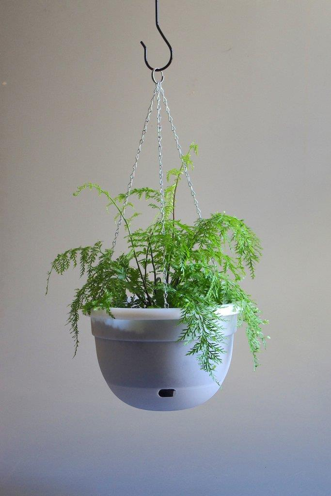 "Mr Kitly x Decor Self Watering Hanging Pot (375mm), $27.50, [Mr Kitly](https://mrkitly.com.au/products/9300621025156?_pos=1&_sid=50528c730&_ss=r|target=""_blank""