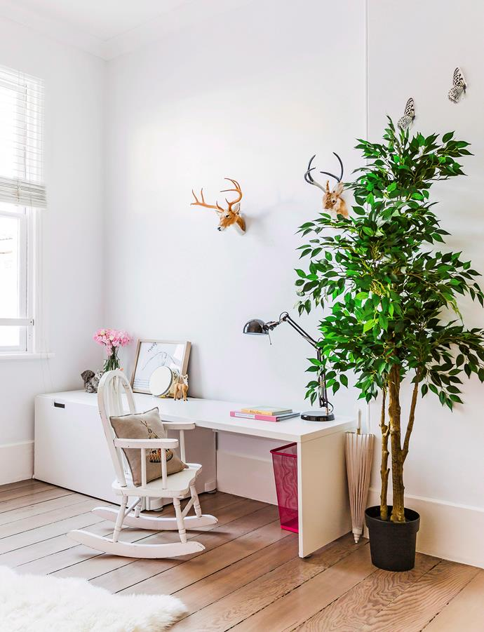 """The weeping fig is one of the most [popular kinds of indoor trees](https://www.homestolove.com.au/indoor-trees-australia-20029 target=""""_blank"""")."""