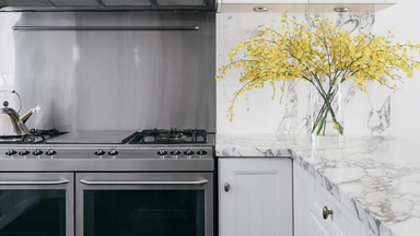 Which is best: wall ovens vs free-standing ovens