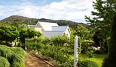 A heavenly garden on old Tasmanian church grounds
