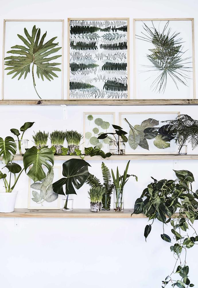 **Sculptural drama** Mix up the dramatic shapes and silhouettes of your pressed leaves sand flowers to create a dynamic look. Group your various pressed leaf artworks to create a hanging gallery wall for dramatic effect.