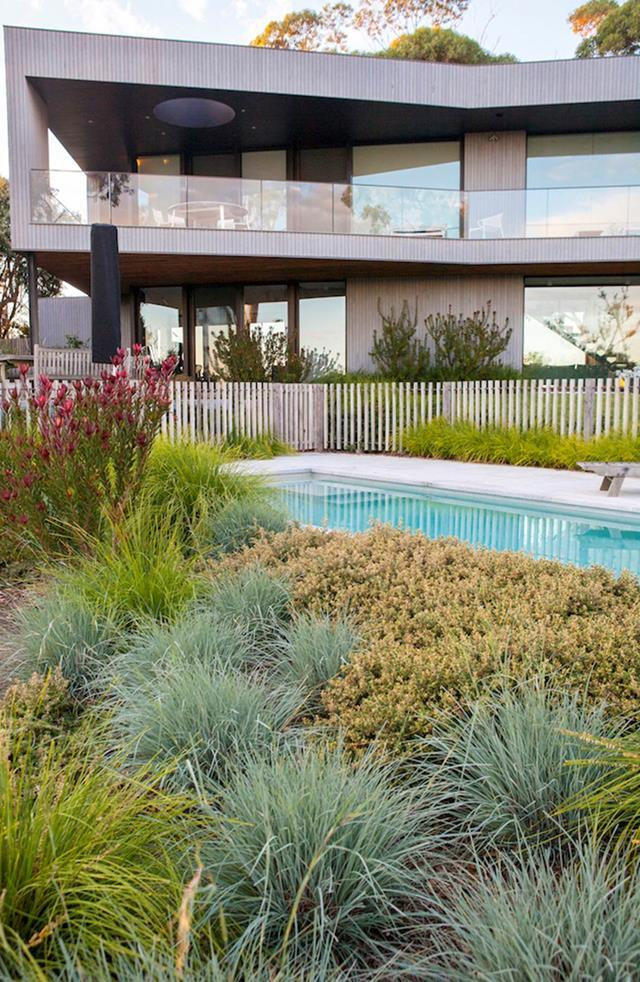 A garden by Fiona Brockhoff featuring a series of ornamental grasses including Blue fescue grass (Festuca glauca).