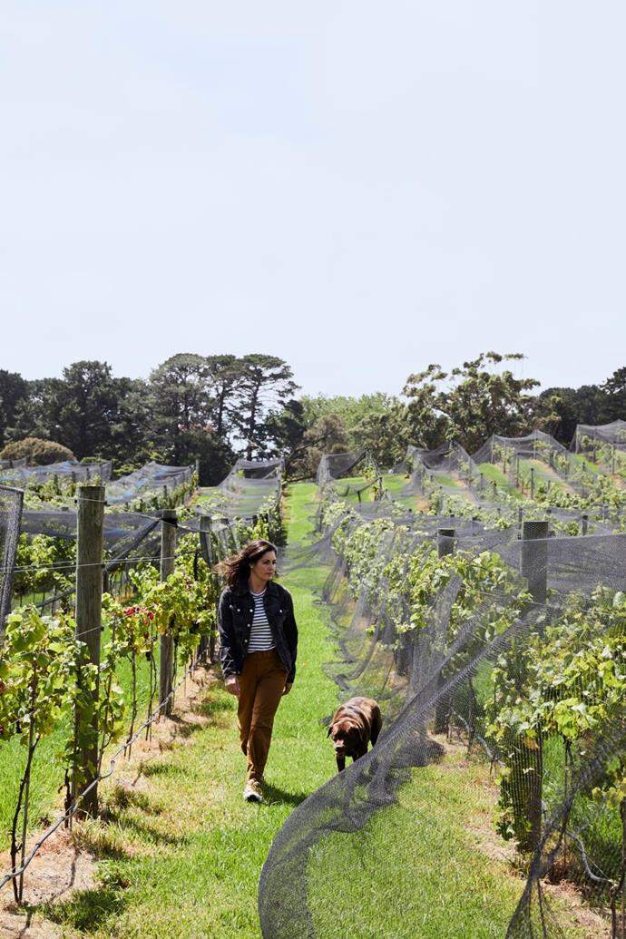 John and Lisa planted the vineyard and an olive grove in 2016 and produced the first vintage this year.
