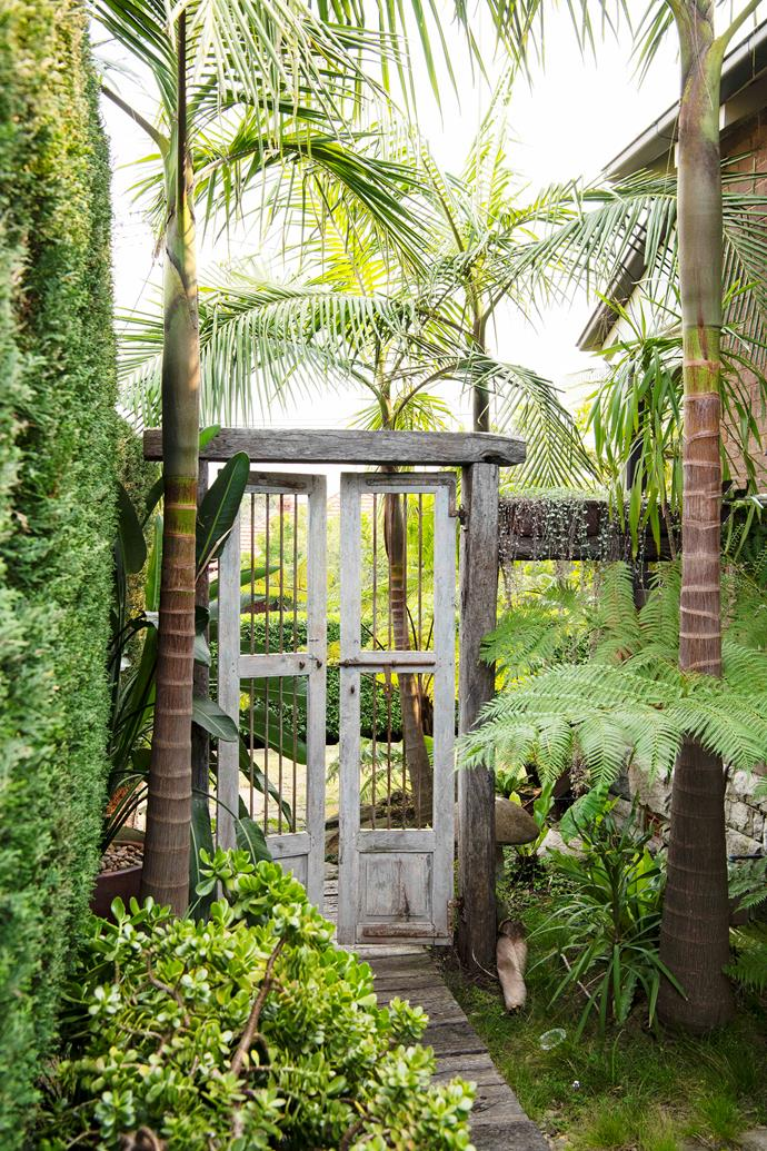 A grand old timber gate Mei chanced upon via Ebay forms a striking entrance to the side garden, a verdant oasis of ferns and palms.