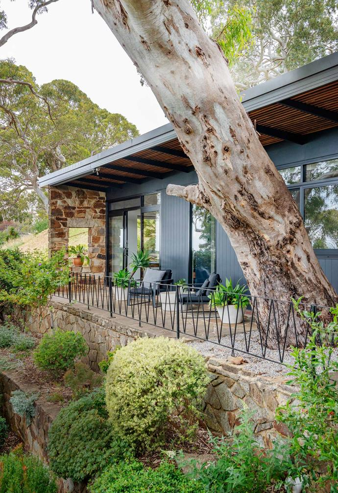 "While one of the most important aspects of having fencing for your home is to provide privacy from prying eyes, for homes that don't require it, a less solid style of fencing could be the answer. This [mid-century modern home in the Adelaide hills](https://www.homestolove.com.au/mid-century-modern-home-adelaide-hills-21553|target=""_blank"") is an architectural marvel nestled amongst nature, so it would have been a shame to use fencing that hid the home from view or blocked the stunning natural view from inside the house. Here, the owners opted for a slim steel fence stylised in a clever zig-zag pattern that helps the fence almost disappear from view."