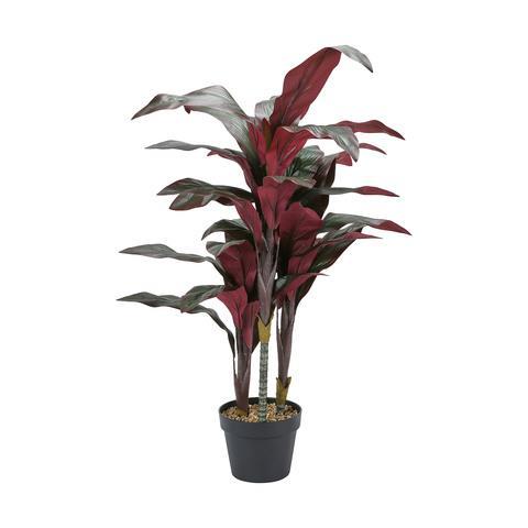 "Artificial Dracaena Plant, $29, [Kmart](https://www.kmart.com.au/product/artificial-dracaena-plant/2848325|target=""_blank""|rel=""nofollow"")"