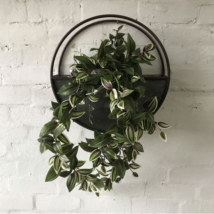 """Artificial Wandering Jew Bush, $49, [The Plants Project](https://theplantsproject.com.au/collections/all-products/products/wandering-jew-bush