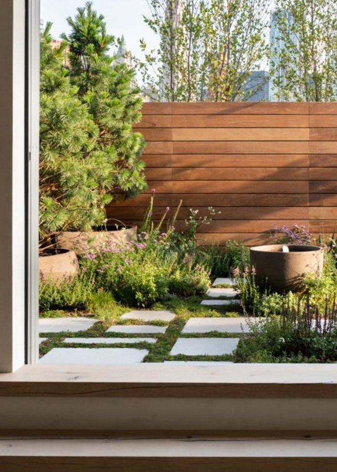 White pines surround the water feature while groundcover adds soft texture.