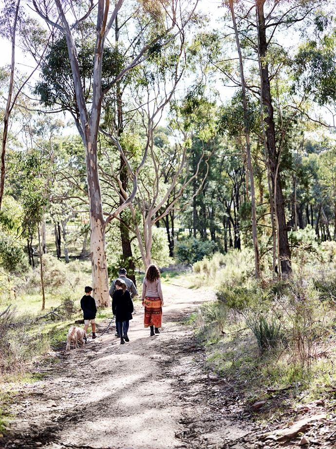 Todd and Camila moved from Melbourne to Castlemaine as they wanted a more rural environment for their children to grow up in.