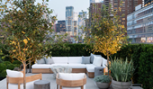 A lush rooftop garden in New York City