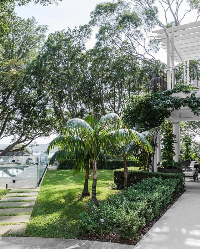 """Strategic placement of plants to complement the existing mature trees and climbers, which include wisteria, bougainvillea and star jasmine, created privacy and depth in the garden of this [updated Georgian-style home](https://www.homestolove.com.au/georgian-style-home-inspired-by-obamas-residence-21091