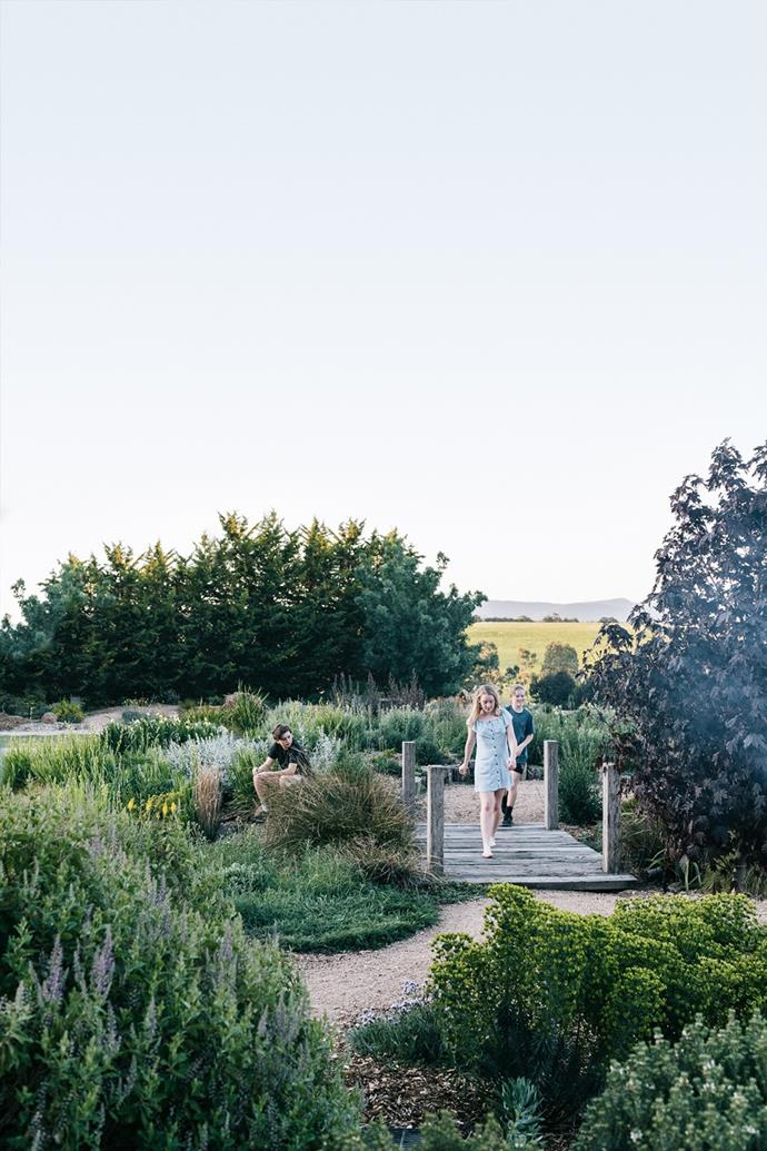"""Studying native plants and garden design led Kathleen Murphy to create a water-wise oasis at her home where clients can see her work firsthand. Her stunning [garden with panoramic views of the Macedon Ranges](https://www.homestolove.com.au/landscape-designer-kathleen-murphy-garden-gisborne-21086