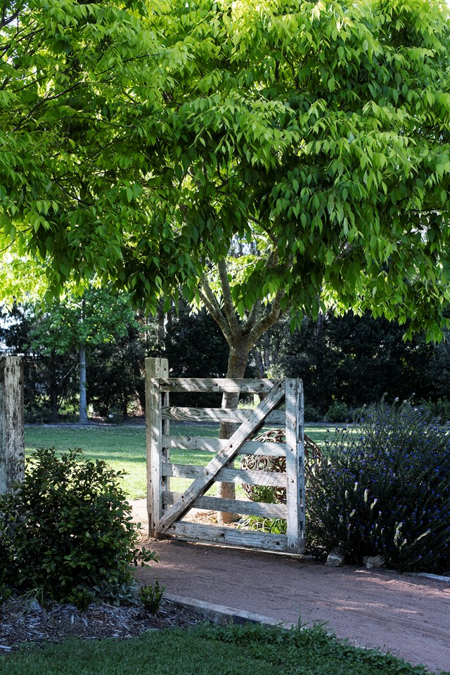 """Nestled in leafy Arcadia, NSW, this idyllic sanctuary is a piece of paradise, in more ways than one. This [English-cottage-style garden named Chanticleer](https://www.homestolove.com.au/chanticleer-garden-arcadia-21720