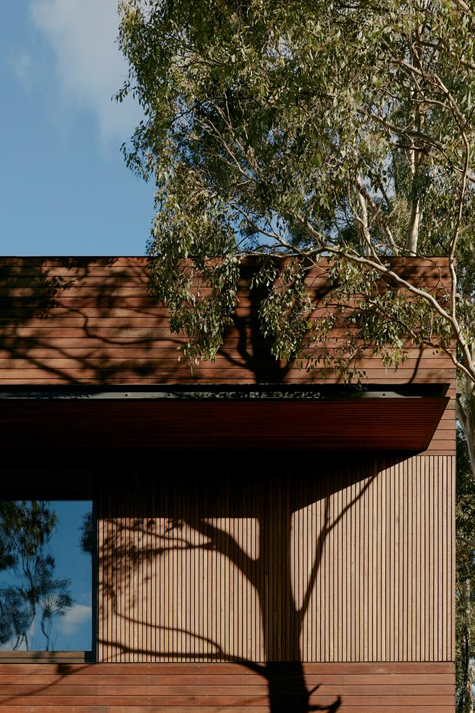 """""""The north facade houses the living, dining and kitchen area,"""" says Madeline."""