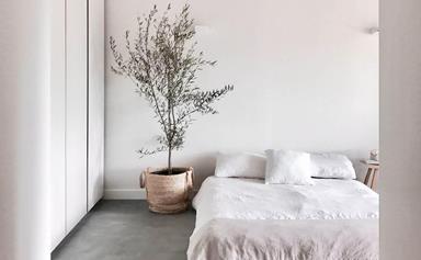 Bedroom essentials for a good night's sleep