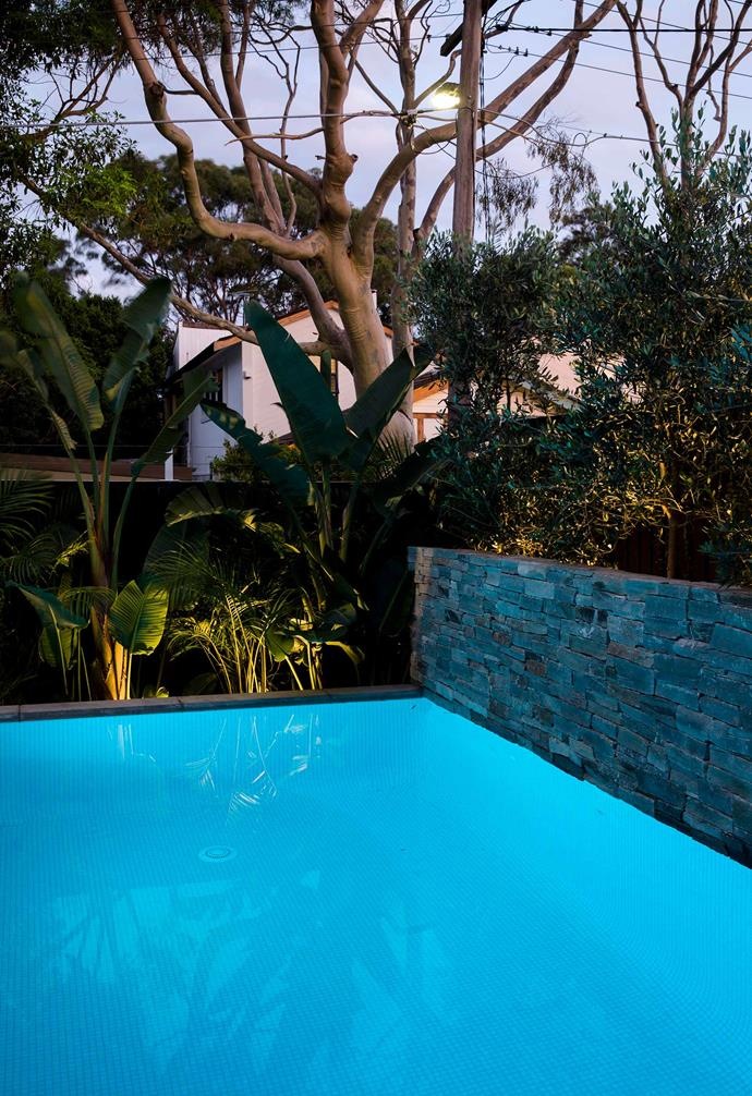 **Fixed on foliage** LED spike lights are set around the pool to cast light up into the clusters of tropical plants that surround it.