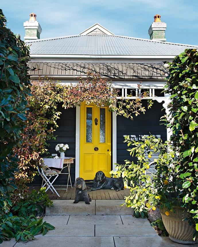 The front door of this Bowral weatherboard cottage instantly commands your attention. *Photo: Martina Gemmola | Story: House & Garden.*