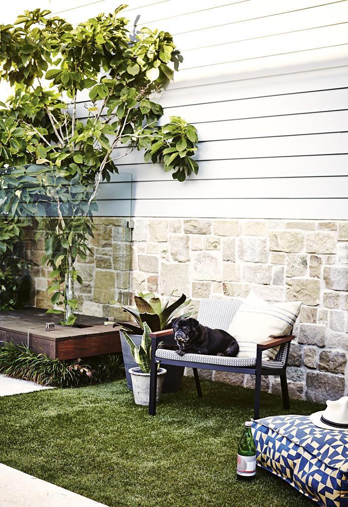 "Plant pots, [Garden Life](https://gardenlife.com.au/|target=""_blank""|rel=""nofollow""). Stripe cushion, [Elements I Love](https://elements.net.au/|target=""_blank""|rel=""nofollow""). Floor cushion, [Tait](https://madebytait.com.au/)."