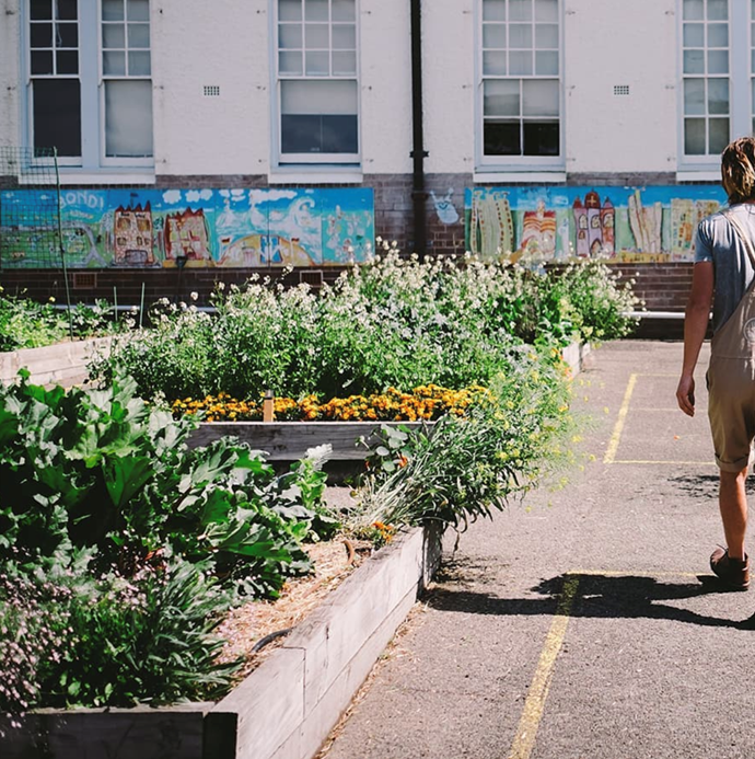 """[Urban Growers](https://linktr.ee/urbangrowers