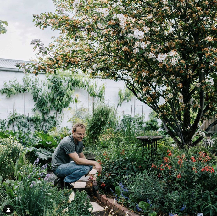 """[The Plant Hunter](https://linktr.ee/theplanthunter