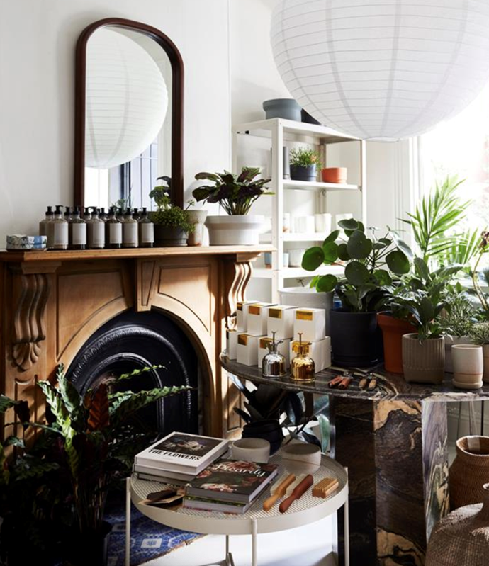 """""""At [The Plant Society](https://www.homestolove.com.au/the-plant-society-sydney-accommodation-20389